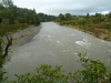 Flood waters on Tuesday morning flowing into Cattle Rustlers