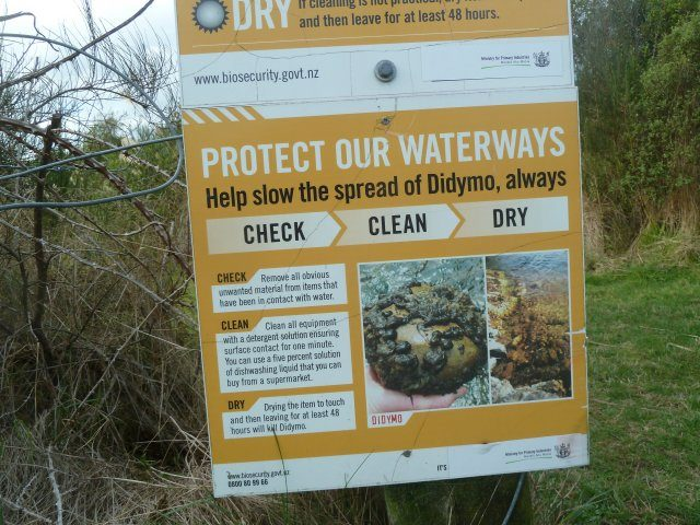 Didymo sign 2