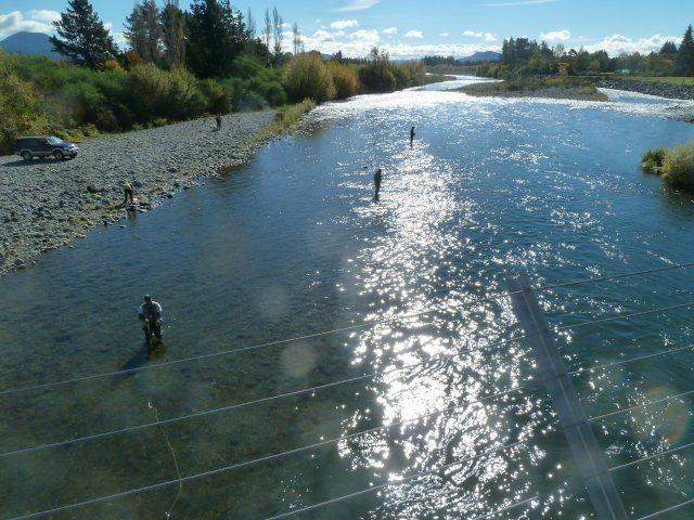 The Bridge Pool, productive and popular