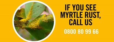 Myrtle Rust Call