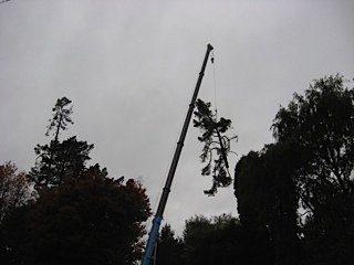 Crane lowered sections into the Major Jones carpark