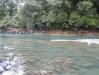 fence_pool2