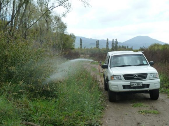 010 Willow Spraying continues 1.3.12
